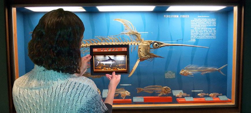 augmented reality app im museum